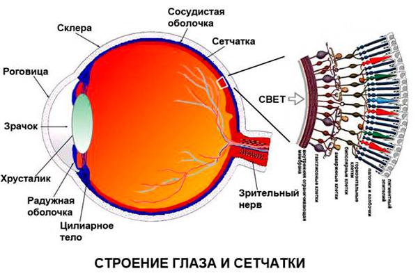 Отслоение или дегенерация сетчатки