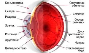 Как лечить застойный диск зрительного нерва